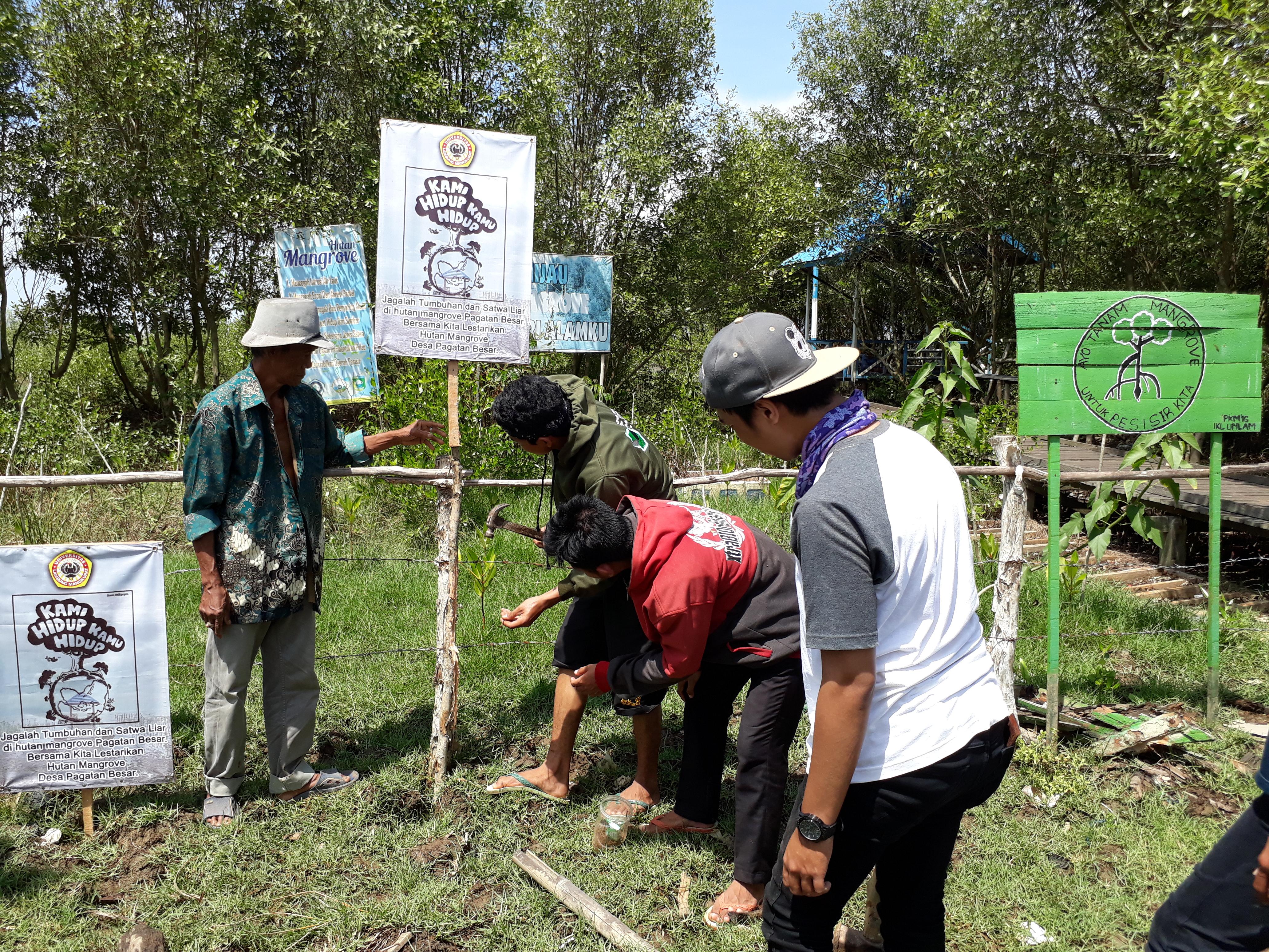 Pelatihan Konservasi Mangrove Untuk Pengembangan Ekowisata Di Desa Pagatan Besar Kabupaten Tanah Laut Pendidikan Biologi